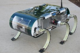 Summary of the RHex robot platform